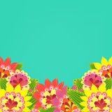 Floral card. Fancy bright colored flowers on a turquoise backgro Stock Photos