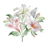 Floral card with flowers. Lilia. Alstroemeria. Butterfly. Watercolor illustration. Royalty Free Stock Photography