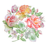 Floral card with flowers. Rose. Watercolor illustration. royalty free stock photography