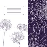 Floral card with gerbers Stock Photography