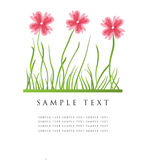 Floral card with place for text Stock Photos