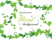 Floral card with plants Royalty Free Stock Photo