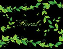 Floral card with plants Stock Photos