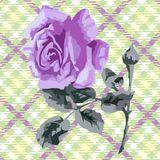 Floral card (roses) Stock Photos
