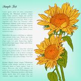 Floral card with sunflowers Stock Photography