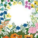 Floral card template Stock Photos