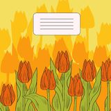 Floral card with tulips Stock Image
