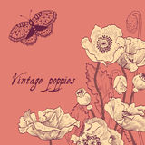 Floral card vintage. Royalty Free Stock Image