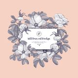 Floral Card Wild Roses And Rosehips. Hand Drawn Boho Botanical Drawings Rose Hips, Dog Rose. Vector Flower Invitation Royalty Free Stock Images
