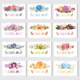 Floral cards set. 12 elegant cards with floral bouquets, design elements. Can be used for wedding, baby shower, mothers day, valentines day, birthday cards Royalty Free Stock Images