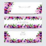Floral cards set Stock Photos