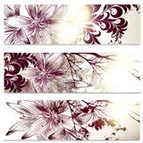 Floral Cards With Lily Flowers Royalty Free Stock Images