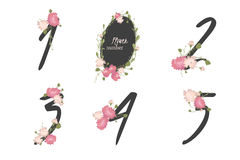 Floral carnation collection numbers in vintage color. One, two, three, four, five - signs vector Royalty Free Stock Photos