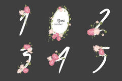 Floral carnation collection numbers in vintage color. One, two, three, four, five - signs vector Royalty Free Stock Images