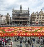 Floral carpet 2014 in Brussels Royalty Free Stock Photo