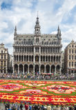 Floral carpet 2014 in Brussels Stock Images