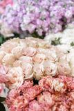 Floral carpet, flower texture, shop concept. Beautiful fresh blossoming flowers roses, spray roses, lilac gillyflower royalty free stock photo