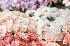 Floral carpet, flower texture, shop concept. Beautiful fresh blossoming flowers roses, spray roses, lilac gillyflower royalty free stock photography