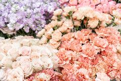 Floral carpet, flower texture, shop concept. Beautiful fresh blossoming flowers roses, spray roses, lilac gillyflower royalty free stock photos