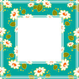 Floral chamomiles border Stock Photos