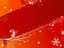 Floral christmas Royalty Free Stock Images