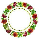 Floral circle Royalty Free Stock Photos