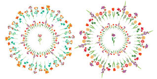 Floral circle set - frame Stock Image