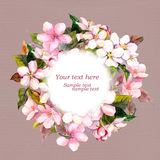 Floral circle wreath with pink flowers - apple, cherry blossom for greeting card. Aquarelle Stock Image