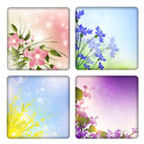 Floral collection Royalty Free Stock Photos