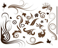 Floral collection. Artistic floral set. Vector illustration stock illustration