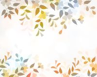 Floral color Stock Photo