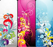 Floral color composition Royalty Free Stock Images