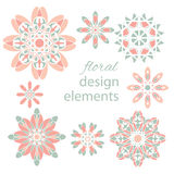 Floral colored design elements Royalty Free Stock Images