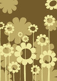 Floral composition. Abstract background with floral arrangment Stock Photography