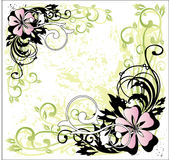 Floral composition royalty free illustration