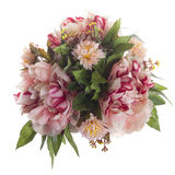 Floral composition with bicolored peonies Stock Photos