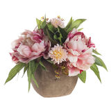 Floral composition with bicolored peonies Stock Photography
