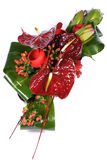 Floral Composition, floristry on a white background Royalty Free Stock Photo