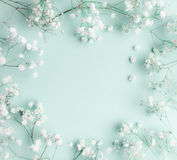 Floral composition with light, airy masses of small white flowers on turquoise blue background, top view, frame. Gypsophila Baby`s-breath flowers stock images