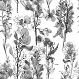 Floral composition. Mother`s Day, wedding, birthday, Easter, Valentine`s Day. Bright colors. Seamless watercolor background. Black and white flowers stock illustration