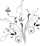 Floral composition. Silhouette on white background Stock Photos