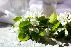 Floral composition on a spring day. stock photos