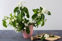 Floral composition on a spring sunny day. royalty free stock photos