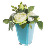 Floral composition with white peonies and green roses Stock Image