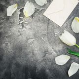 Floral composition with white tulip flowers, paper envelope and copy space on gray background. Flat lay, top view. Floral composition with white tulip flowers stock images