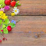 Floral composition on a wooden Board Royalty Free Stock Photography