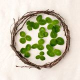 Floral composition. Wreath made of roools, leaves, and flowers on tissue white background. Rustic style of home decor, flat lay, t. Op view. St.Patrick `s Day royalty free stock photography