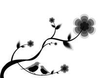Floral con los pájaros del amor Fotos de archivo