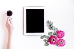 Floral concept with pink flowers on white background top view mock-up. Floral concept with pink ranunculus flowers, hand and tablet on white desk background top Stock Photo