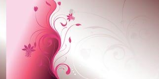 Floral cor-de-rosa Foto de Stock